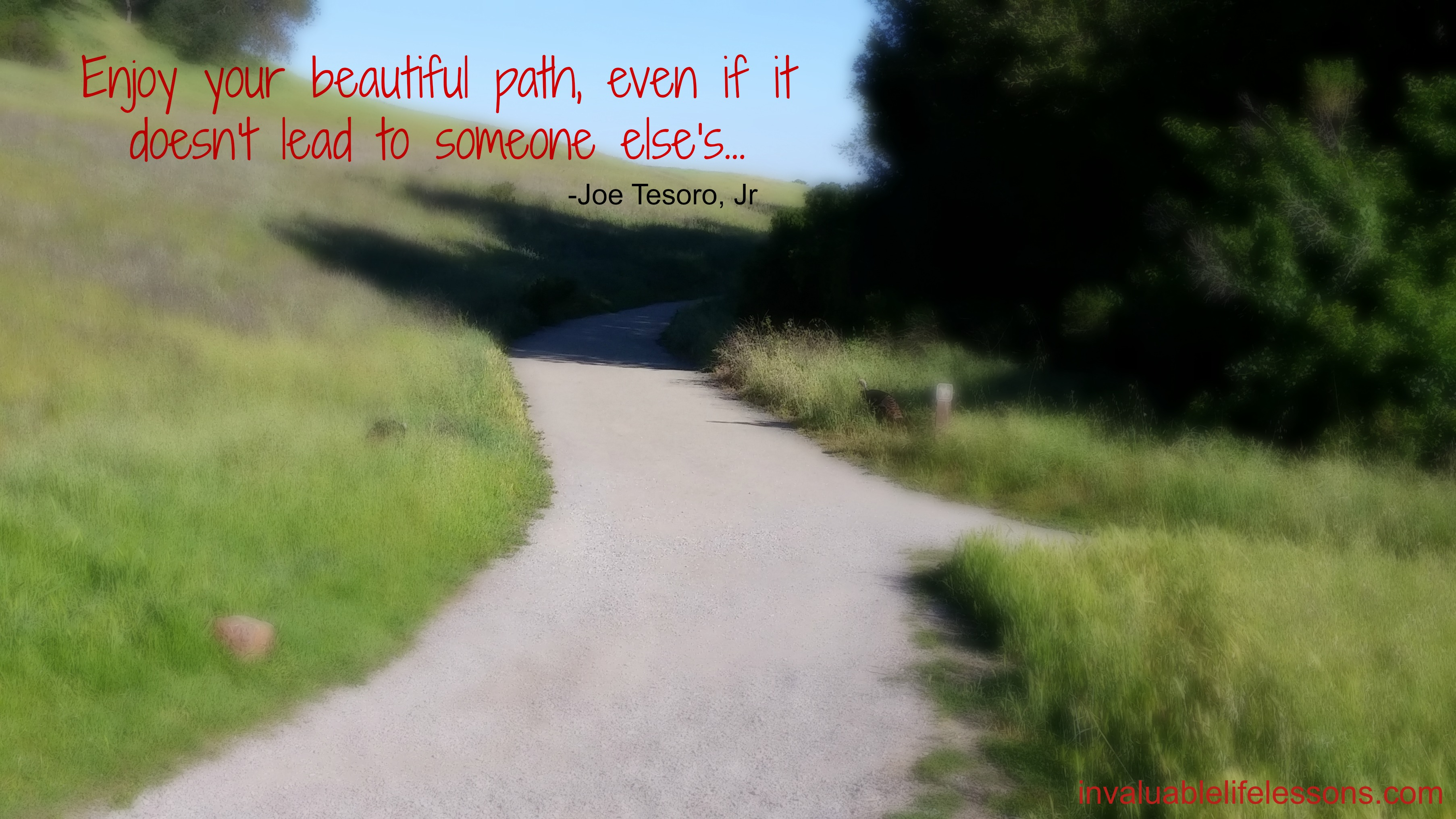 Beautiful Path…